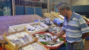 Yaz Sezonunda Balık Tezgahları Cılız Kaldı