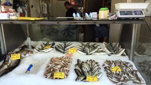 Akçakoca'da Balık Fiyatları Arttı