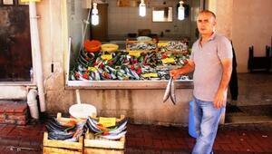 Bartın'da Balık Bereketi