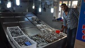 Kurban ETİ Balık Satışlarını Düşürdü
