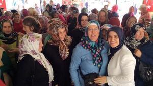 AK Parti Trabzon Milletvekili Köseoğlu: