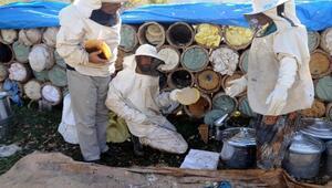 Hizan'da Arıcılığı Geliştirme Projesi