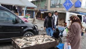 Varto'da Balıkçılar Sezonu Açtı