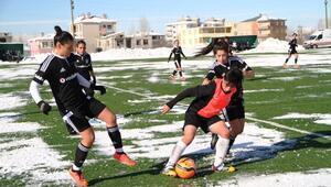 Van Büyükşehir, Beşiktaş'a 1-0 Yenildi