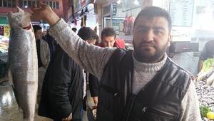 Malatya Balık Pazarında, Sezon Bereketli Geçiyor