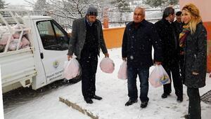 Erdemli Belediyesi'nden 'C Vitamini' Etkinliği
