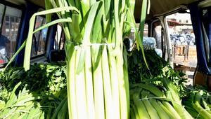 Bafrada sebze fiyatları düştü