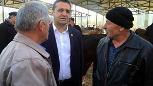 CHP Sinop Milletvekili Karadeniz:
