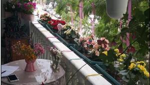 Karşıyakanın en güzel balkon ve bahçeleri seçilecek