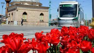 Büyükşehir'den Çiçek Gibi Konya fotoğraf yarışması