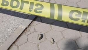 Eskişehirde el bombası bulundu