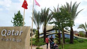 300 yıllık Çöl Gülü Expo 2016da sergileniyor