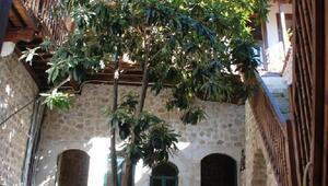 Oyuncu Mete Horozoğlu, Antakyada butik otel açıyor