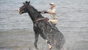 Türk Silahlı Kuvvetlerinin atları Bursada böyle eğitiliyor