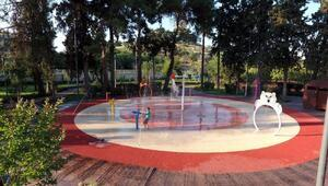 Fıstık Park, alanında dünyada bir ilk