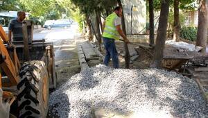 Çankaya Belediyesinin Ördekli Park çalışması