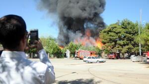 Gaziantep'te ormanlık alandaki restoranda korkutan yangın