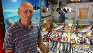 Çanakkalede sardalyanın fiyatı ilk günden 5 lira ucuzladı