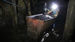 Denizin altında 40 milyon ton kömür çıkarılmayı bekliyor