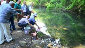 Vize'nin Yenesuyu deresinde balık avlanması tamamen yasaklandı