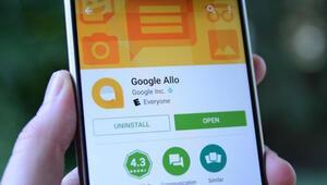 Google Alloyu 5 milyon kullanıcı indirdi