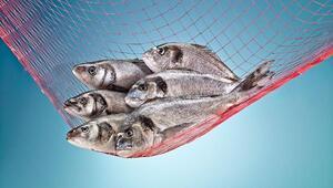İspanyollara Türk balığı ziyafeti