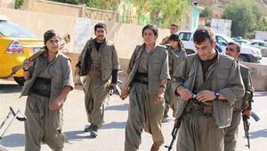 Çavuşoğlundan PKKlıların görüntülerine tepki