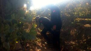 Kayıp Irmak için arama çalışmalarına tekrar başlandı