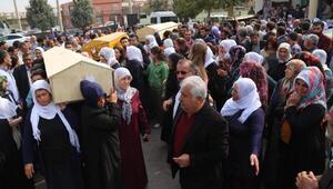 HDPli milletvekilleri, ölü ele geçirilen 7 PKKlının cenazesinde
