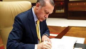Taslak anayasada Erdoğana 3 yetki: Bakanları atayıp alabilecek