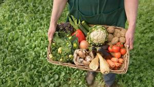 Organik tarım desteğine nasıl başvurabilirsiniz