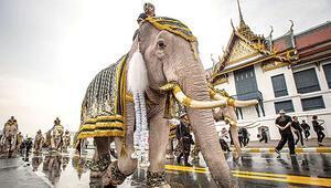 Kralın filleri