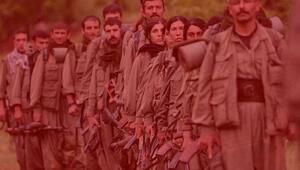 Hollandadan PKK adımı