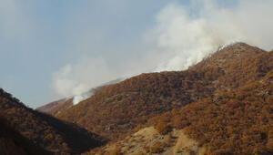 Son dakika haberi.. PKKya hava destekli operasyon: 14 terörist öldürüldü