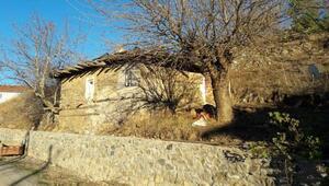 Eylül Su Sapan, Kazdağlarında ev aldı