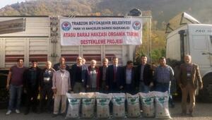 Büyükşehir Belediyesinden organik tarıma destek