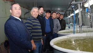 Kardeş balıkçılık uzmanları Demrede