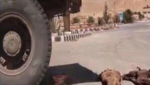 IŞİD kamyonlarla parçalamış