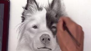3 boyutlu köpek çizimi