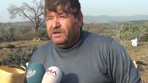 Yırcada ağaçları kesilen zeytinci kazada öldü