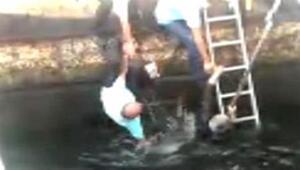 Kurtarırken o da denize düştü