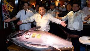 Bu balık tam 2 milyon 225 bin TLye satıldı