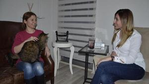 Kedi fobisine kedili terapi