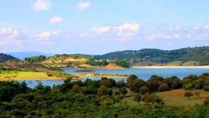 TEMA Vakfı Başkanı Ataç, Çanakkalenin havası bozulmasın
