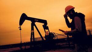 Brent petrol 53,8 dolar seviyesinde
