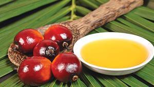 'Palm yağı'ndatartışma sürüyor
