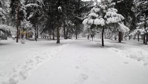 Kayseride kar yağışı hayatı olumsuz etkiledi