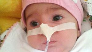 Trabzonda 4 aylık bebeğin organları yaşam umudu oldu