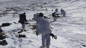 Son dakika 300 bin TL ödülle aranan PKK'lı Ağrı'da öldürüldü