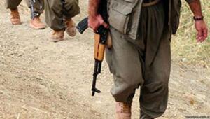 Türkiyeye girmeye çalışan 4 PKKlı yakalandı